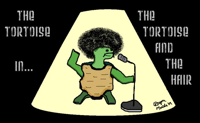 Tortoise Series #1